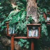 co łączy książki i zdrowie