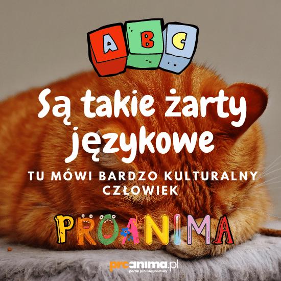 żarty językowe proanima.pl