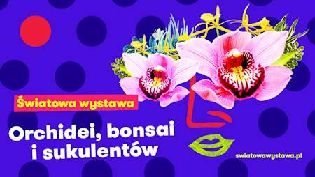Wystawa Orchidei Bonsai i Sukulentów - Łódź 2021