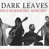 dark leaves Białystok